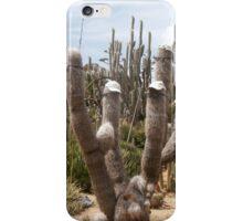 Cool Cactus iPhone Case/Skin