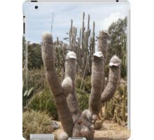 Cool Cactus iPad Case/Skin
