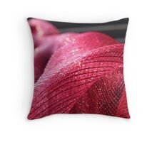 Ribbon Throw Pillow