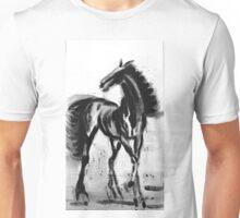 andalusian colt Unisex T-Shirt