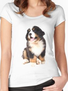 bernese mountain dog puppy Women's Fitted Scoop T-Shirt
