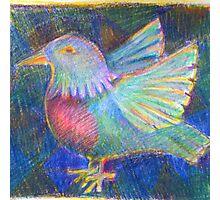 Hand drawn little bird Photographic Print