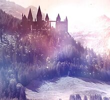 Wizarding World by Tanguy Leysen