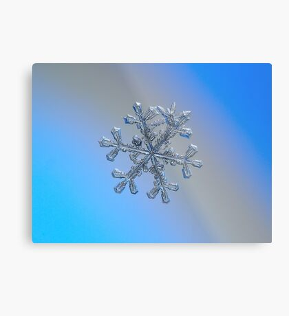 Three-in-one, real snowflake macro photo Metal Print
