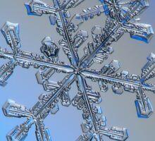 Three-in-one, real snowflake macro photo Sticker
