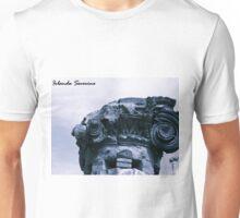 museum , architerture, column, history, pompeii Unisex T-Shirt