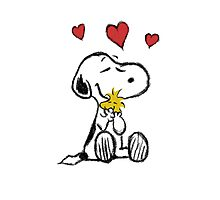 Snoopy sketch Photographic Print