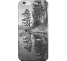 Tree Along the Creek iPhone Case/Skin