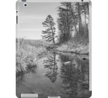Tree Along the Creek iPad Case/Skin