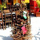 Caribbean Christmas  by ArtbyDigman