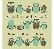 Energetic Owls Photographic Print