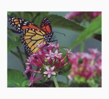 Monarch in pink ixora Kids Tee