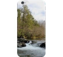 Middle Prong River 1 iPhone Case/Skin