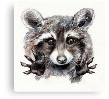 Magic! // Raccoon Canvas Print