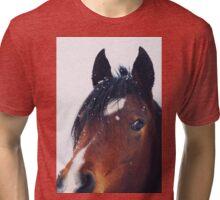Stormy Tri-blend T-Shirt