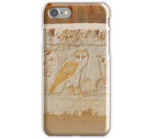 Egyptian hieroglyphs   iPhone Case/Skin