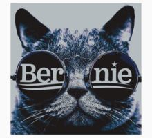 Grey Hip Cat for Bernie Kids Tee