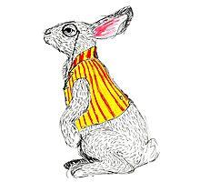 Waistcoated White Rabbit Photographic Print