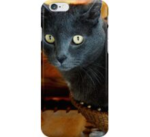 Cat In A Basket iPhone Case/Skin