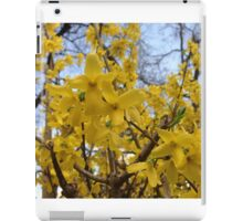 ash-840 iPad Case/Skin