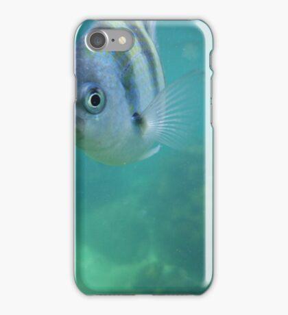 Helloo...? iPhone Case/Skin