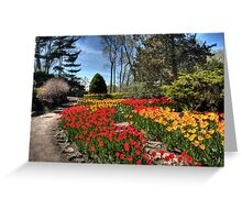 Up the Rock Garden Hill Greeting Card