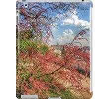 ash-843 iPad Case/Skin