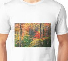 AUTUMN FOREST ALONG LITTLE RIVER Unisex T-Shirt