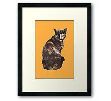 Burano Chimera Cat Orange Italy Feline Framed Print