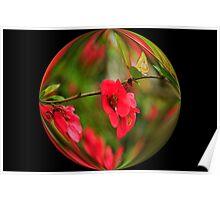 Red Japanese  Flowering Cherry Tree... Poster