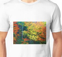 BEECH TREES,AUTUMN Unisex T-Shirt