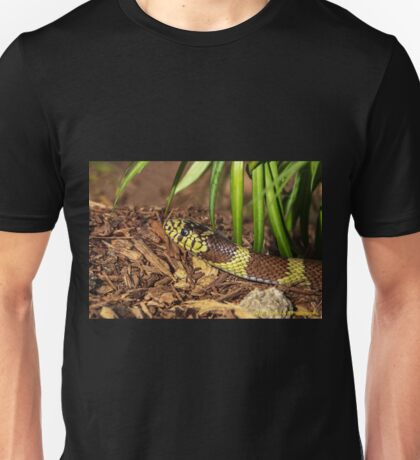 A Visit From the King Unisex T-Shirt