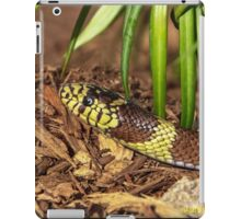 A Visit From the King iPad Case/Skin