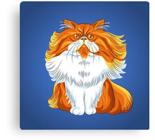 Cute red fluffy Persian cat  Canvas Print