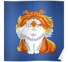 Cute red fluffy Persian cat  Poster
