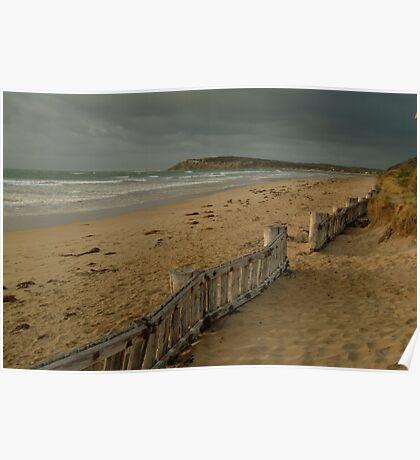 Joe Mortelliti Gallery - Early morning, RAAFS beach, Bellarine Peninsula, Victoria, Australia.  Poster