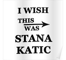 I wish this was Stana Katic Poster