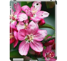 Flowers - crabapple blossoms (2010) iPad Case/Skin