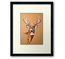 White-tailed Deer Buck by Dennis Dalton Framed Print