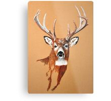 White-tailed Deer Buck by Dennis Dalton Metal Print