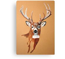 White-tailed Deer Buck by Dennis Dalton Canvas Print