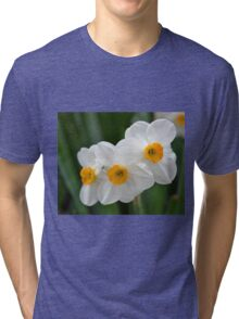 Three Miniature Daffodils Tri-blend T-Shirt