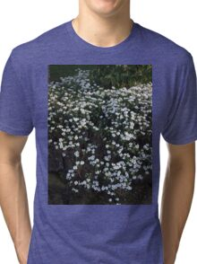 my garden: aesthetic flora Tri-blend T-Shirt