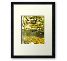 Stream Camp 3 Framed Print