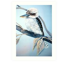 Cool Kookaburra Art Print