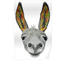 Funny donkey (orange/red/green) Poster