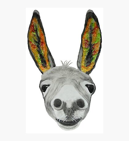 Funny donkey (orange/red/green) Photographic Print
