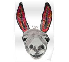 Funny donkey (red/orange) Poster