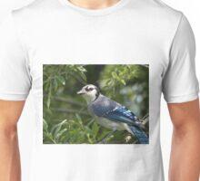 Blue Jay In Tree Unisex T-Shirt