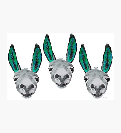 Funny donkeys (version 3) Photographic Print